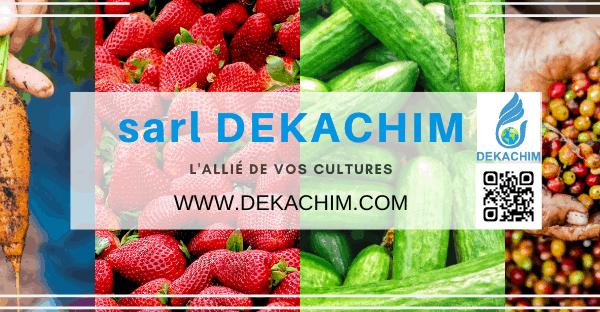 dekachim infos